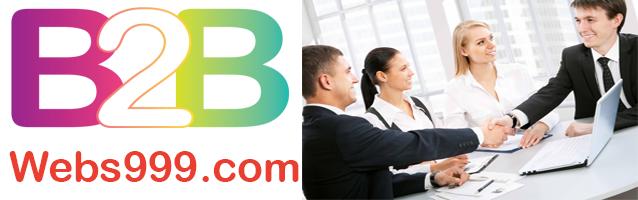 B2B Portal Development
